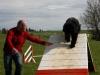 agility-chien-educateur-canin-comportementaliste-bretagne