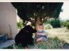 educateurcanin-comportementaliste-canin-relation-chien-enfant-loireatlantique-bergerdebeauce